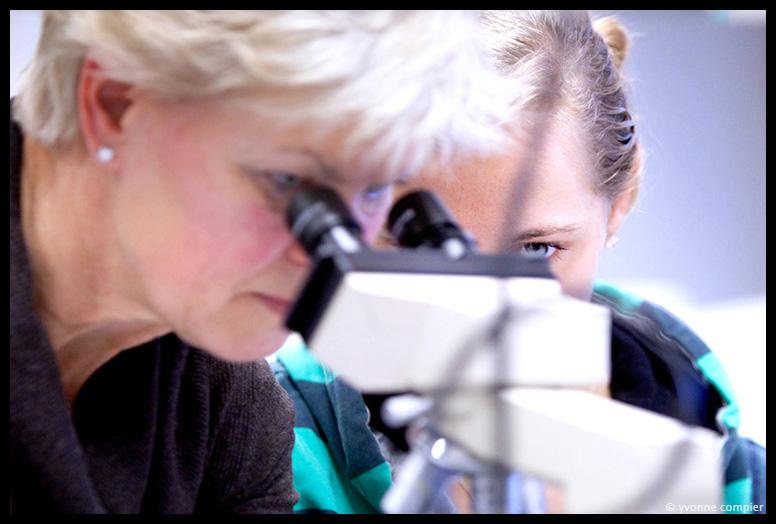 Foto's gemaakt tijdens een practicum van biologie voor jonge bachelor studenten. studenten achter microscopen, lesgeven van docenten